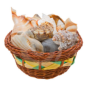 Sea Shells In A Basket Isolated On White Royalty Free Stock Photos - Image: 9474658