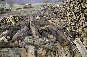 Woodpile Royalty Free Stock Image - Image: 9476716