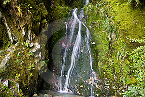 Mossy Little Waterfall 2 Royalty Free Stock Photos - Image: 9482568