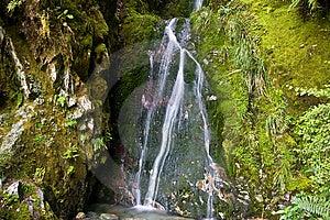 Bemost Weinig Waterval 2 Royalty-vrije Stock Foto's - Afbeelding: 9482568