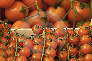 Tomatoes Stock Image - Image: 9483611