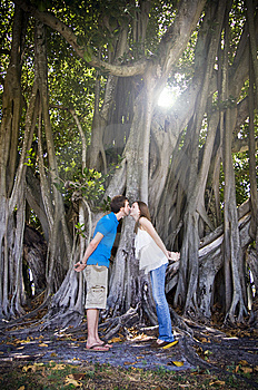 Couple Kissing Under Tree Royalty Free Stock Image - Image: 9490006