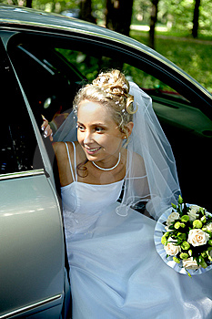 Beautiful Bride Stock Photography - Image: 9490052