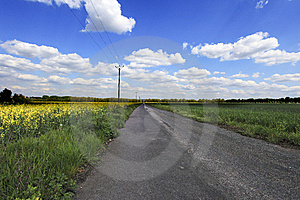 Country Road Royalty Free Stock Photo - Image: 9494645