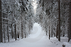 Russian Winter 4 Stock Photos - Image: 9500853