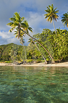 Island In South Pacific Royalty Free Stock Photography - Image: 9531627