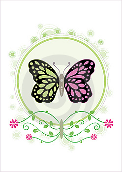 Flower And Butterfly Stock Image - Image: 9535701