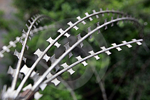 Wire Netting Royalty Free Stock Images - Image: 9537669
