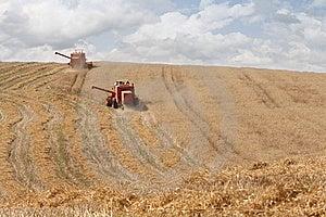 Harvesting Royalty Free Stock Photos - Image: 9546718