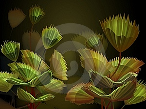 Palm Stock Photos - Image: 9549233