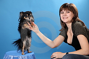 The Girl With The Doggie On A Blue Background Royalty Free Stock Photos - Image: 9570248