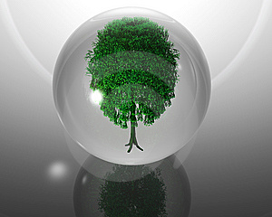 Green Ecological Tree In Glass Orb  Royalty Free Stock Photography - Image: 9571147