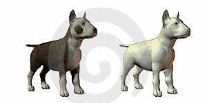 Bull Terrior Dog 3d Model Stock Image - Image: 9571521
