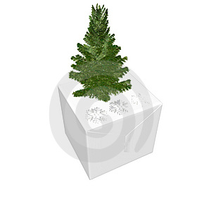 Bare Christmas Tree Ready To Decorate Royalty Free Stock Photography - Image: 9571697