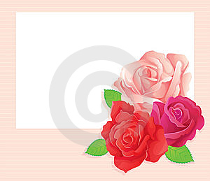 3 Roses Stock Image - Image: 9576451