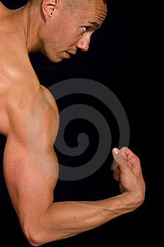 Muscular Male Stock Image - Image: 9592351
