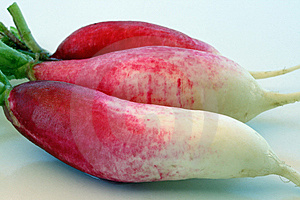 3 Red & White Radishes Stock Images - Image: 9593604