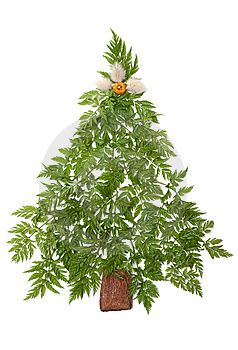 Decorative Cristmas Spruce Stock Photos - Image: 9601953