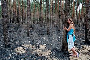 Burnt Stock Image