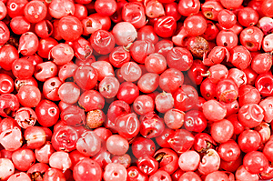 Red Pepper Stock Photos - Image: 9611813