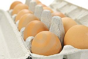 Free Range Eggs Stock Photos - Image: 9619513