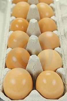Free Range Eggs Stock Photos - Image: 9619583