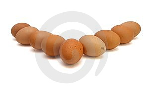 Wedge Of Brown Eggs Isolated Stock Image - Image: 9620531