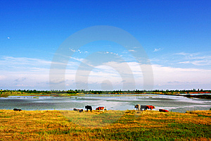 Landscapes Royalty Free Stock Photography - Image: 9646027