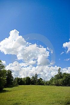 Park Royalty-vrije Stock Afbeeldingen - Afbeelding: 9668479