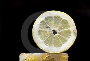 Lemon Slice In Black Stock Photos - Image: 9675793