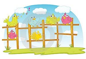 Birds Royalty Free Stock Photos - Image: 9690458