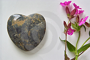 Heart And Flower Royalty Free Stock Image - Image: 9694156