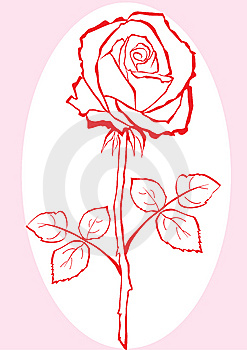 Hand Sketched Rose. Stock Images - Image: 9726194