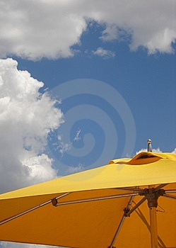 Summer Dayz Royalty Free Stock Image - Image: 9737296