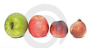Row Of Fruits Royalty Free Stock Photos - Image: 9740798