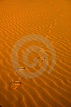 Footsteps In The Sand Royalty Free Stock Image - Image: 9743256