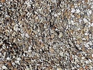 Gravel Stones Royalty Free Stock Image - Image: 9749006