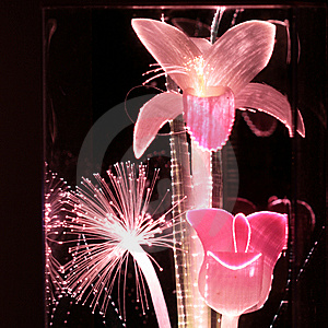 Pink Fiber Optic Flowers Stock Images - Image: 9750724