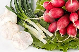 Spring Onions, Garlic, Lettuce And Radish Royalty Free Stock Images - Image: 9754469
