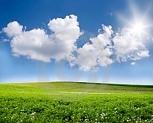 Blue sky and green field Stock Photo