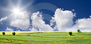 Blue sky and green field Free Stock Photography