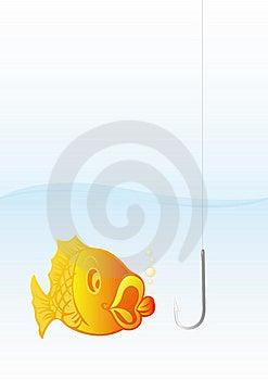 Fish Stock Photography - Image: 9756152