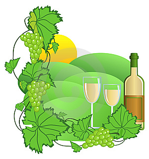 Vineyard Royalty Free Stock Photography - Image: 9756427