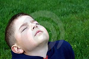 Sunbathing Stock Image - Image: 9760131