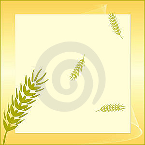 Card With A Grain Stock Image - Image: 9763001