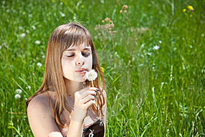 Young Girl Blowing On Dandelion Royalty Free Stock Photo - Image: 9767405