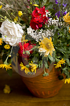 Flowers In Jug Stock Photos - Image: 9793123