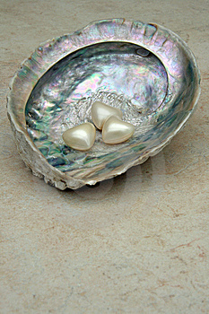 Shellheart Stock Photo - Image: 9793150
