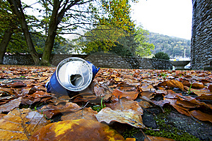 Tin Among The Leaves Royalty Free Stock Photos - Image: 9797098