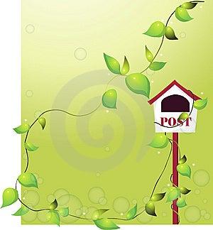 Vines Stock Photo - Image: 9799280